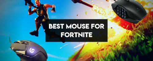 Best Mouse For Fortnite – (Play Like A Pro With These Gaming Mice)
