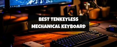 Best Tenkeyless (TKL) Mechanical Keyboards For Gaming (For Every Type Of Gamer)