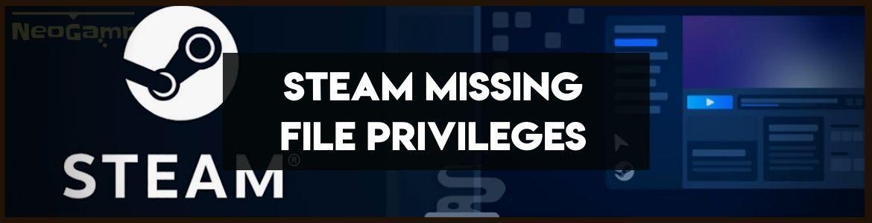Steam Missing File Privileges
